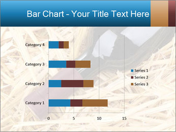 0000073494 PowerPoint Template - Slide 52