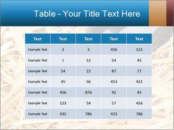 0000073494 PowerPoint Template - Slide 55