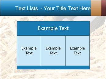 0000073494 PowerPoint Template - Slide 59
