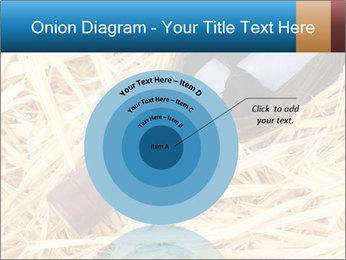 0000073494 PowerPoint Template - Slide 61
