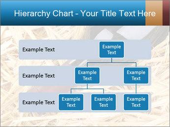 0000073494 PowerPoint Template - Slide 67
