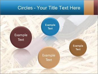 0000073494 PowerPoint Template - Slide 77