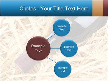 0000073494 PowerPoint Template - Slide 79