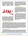 0000073501 Word Templates - Page 4