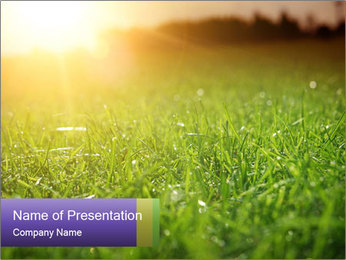 0000073503 PowerPoint Template