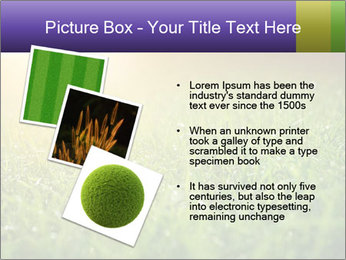 0000073503 PowerPoint Templates - Slide 17