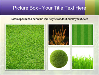 0000073503 PowerPoint Templates - Slide 19