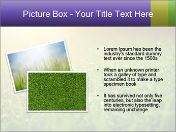0000073503 PowerPoint Templates - Slide 20