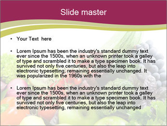 0000073510 PowerPoint Template - Slide 2