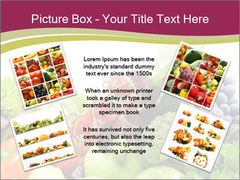 0000073510 PowerPoint Templates - Slide 24