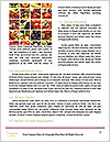 0000073510 Word Template - Page 4