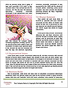 0000073515 Word Template - Page 4