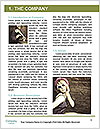 0000073523 Word Template - Page 3