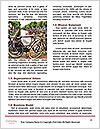 0000073524 Word Templates - Page 4