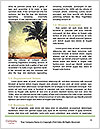 0000073525 Word Templates - Page 4
