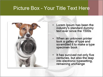 0000073527 PowerPoint Templates - Slide 13