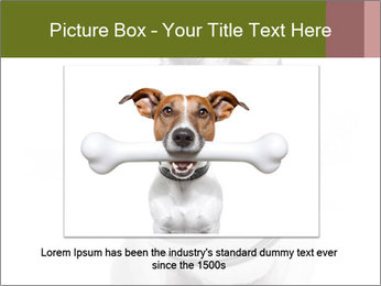 0000073527 PowerPoint Template - Slide 15