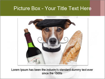 0000073527 PowerPoint Template - Slide 16