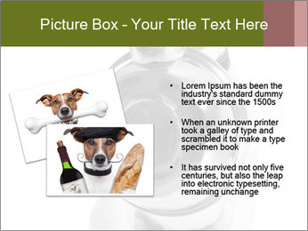 0000073527 PowerPoint Templates - Slide 20
