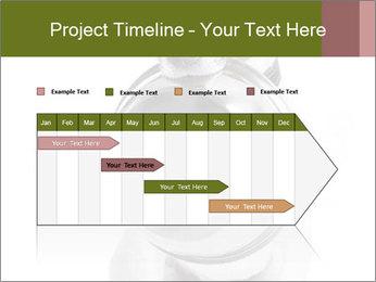 0000073527 PowerPoint Template - Slide 25