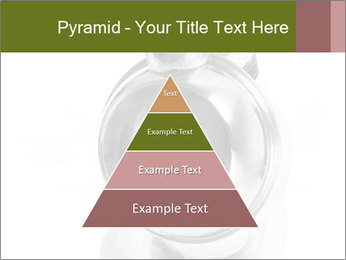 0000073527 PowerPoint Templates - Slide 30