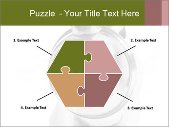 0000073527 PowerPoint Templates - Slide 40