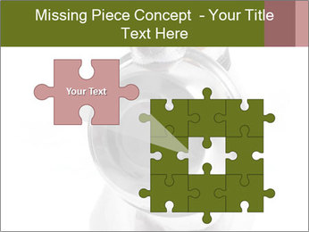 0000073527 PowerPoint Templates - Slide 45