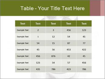 0000073527 PowerPoint Template - Slide 55