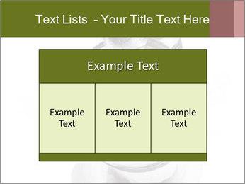 0000073527 PowerPoint Template - Slide 59