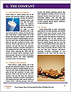 0000073530 Word Template - Page 3