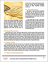 0000073530 Word Template - Page 4
