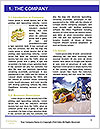 0000073538 Word Template - Page 3