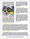 0000073538 Word Template - Page 4