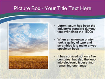 0000073551 PowerPoint Template - Slide 13