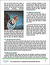 0000073554 Word Templates - Page 4
