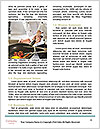 0000073556 Word Templates - Page 4