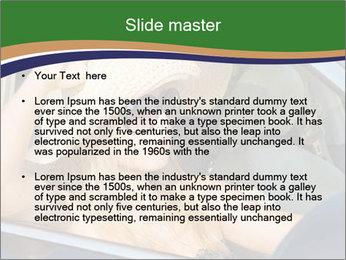 0000073559 PowerPoint Template - Slide 2