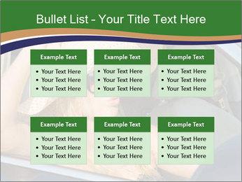 0000073559 PowerPoint Template - Slide 56