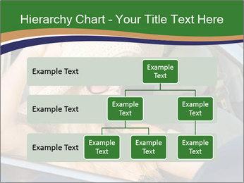 0000073559 PowerPoint Template - Slide 67