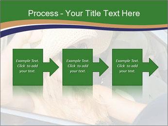 0000073559 PowerPoint Template - Slide 88