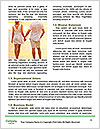 0000073560 Word Templates - Page 4