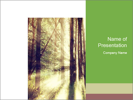 0000073570 PowerPoint Templates