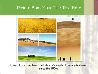 0000073570 PowerPoint Templates - Slide 15
