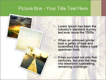 0000073570 PowerPoint Templates - Slide 17