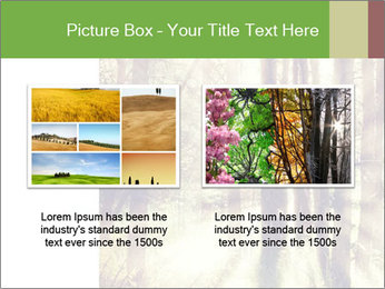 0000073570 PowerPoint Templates - Slide 18
