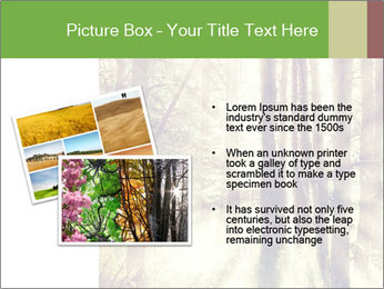 0000073570 PowerPoint Templates - Slide 20