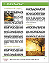0000073570 Word Template - Page 3