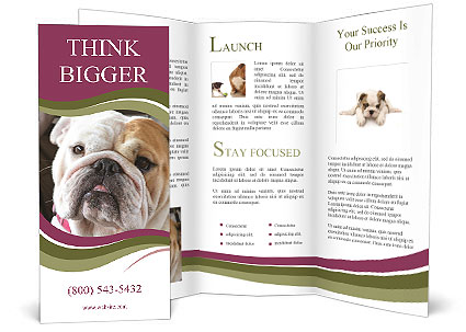 0000073578 Brochure Template