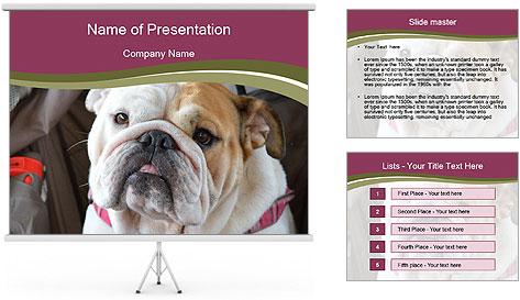0000073578 PowerPoint Template
