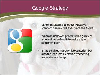 0000073578 PowerPoint Template - Slide 10
